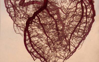 Angioplastica o bypass aorto-coronarico?